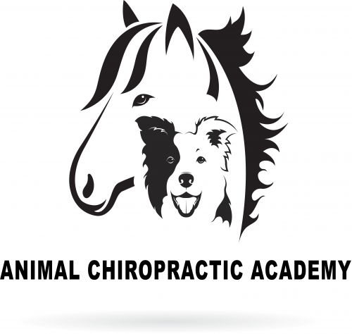 Animal Chiropractic Academy