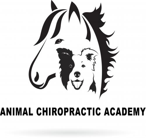 Animal Chiropractic Academy